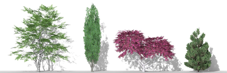 Piante 3D parametriche - Volume 12